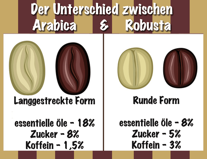Kaffeeanbau: Arabica Robusta Bohnen