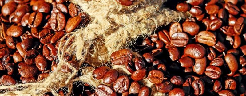 Kaffeebohnen Arabica und Robusta
