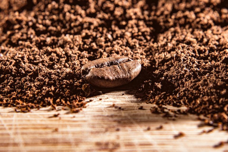 Kaffeepulver: Kaffeebohne